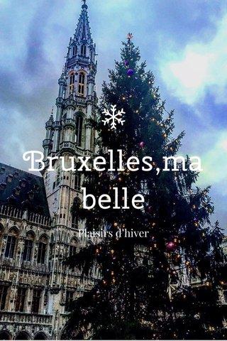 Bruxelles,ma belle Plaisirs d'hiver