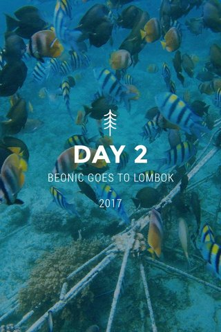 DAY 2 BEONIC GOES TO LOMBOK - 2017