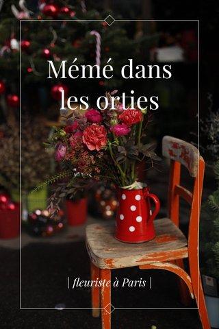 Mémé dans les orties | fleuriste à Paris |