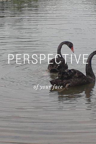 PERSPECTIVE of your face
