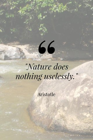 """""""Nature does nothing uselessly."""" Aristotle"""