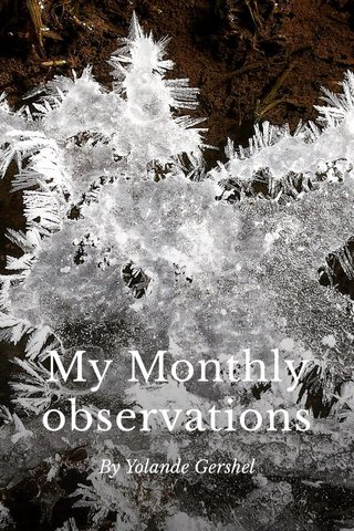 My Monthly observations By Yolande Gershel