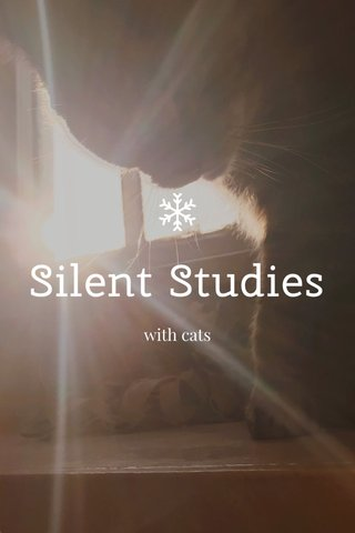 Silent Studies with cats