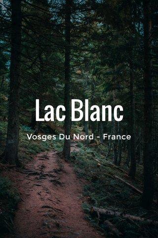 Lac Blanc Vosges Du Nord - France