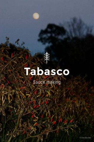 Tabasco Sauce making