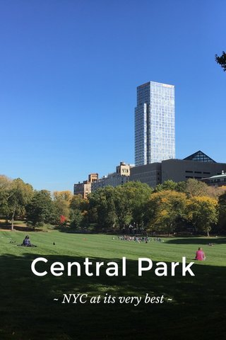 Central Park ~ NYC at its very best ~