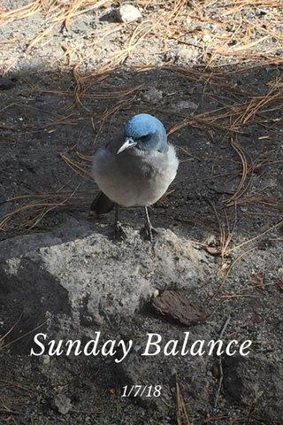 Sunday Balance 1/7/18