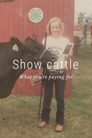 Show cattle What you're paying for