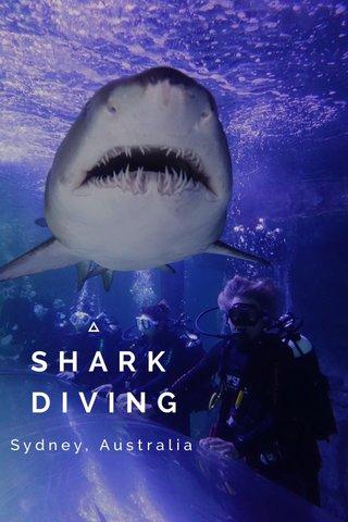 SHARK DIVING Sydney, Australia