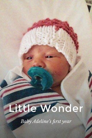 Little Wonder Baby Adeline's first year