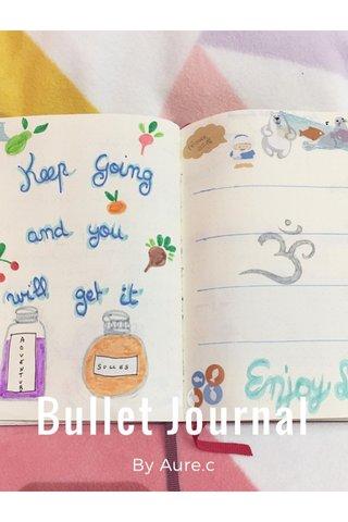 Bullet Journal By Aure.c