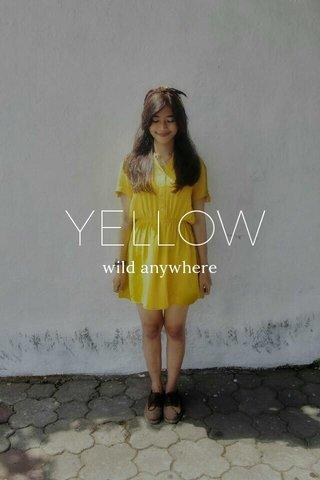 YELLOW wild anywhere