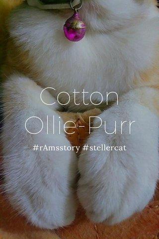 Cotton Ollie-Purr #rAmsstory #stellercat