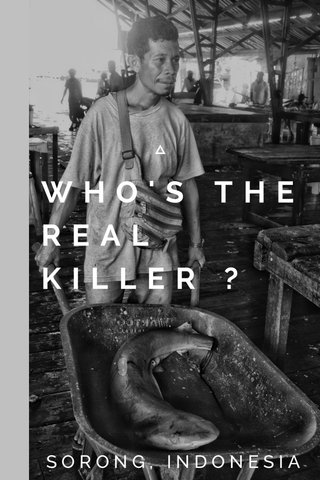 WHO'S THE REAL KILLER ? SORONG, INDONESIA