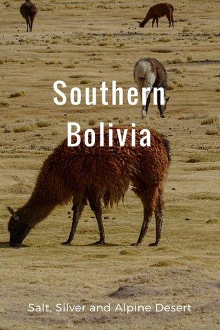 Southern Bolivia Salt, Silver and Alpine Desert
