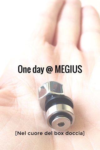 One day @ MEGIUS [Nel cuore del box doccia]
