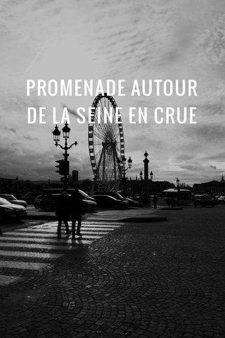 PROMENADE AUTOUR DE LA SEINE EN CRUE