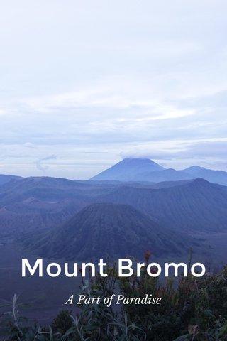 Mount Bromo A Part of Paradise