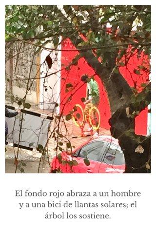 El fondo rojo abraza a un hombre y a una bici de llantas solares; el árbol los sostiene.