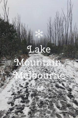 Lake Mountain, Melbourne Cold Dark Day