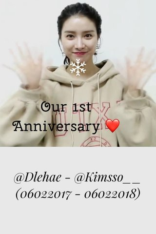 Our 1st Anniversary ❤️ @Dlehae - @Kimsso__ (06022017 - 06022018)
