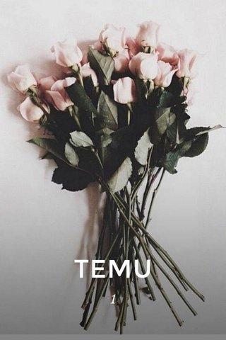 TEMU 1