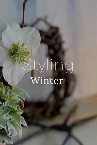 Styling Winter