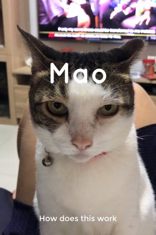 Mao How does this work
