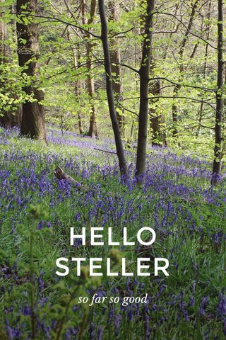 HELLO STELLER so far so good