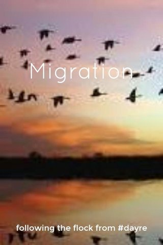 Migration following the flock from #dayre