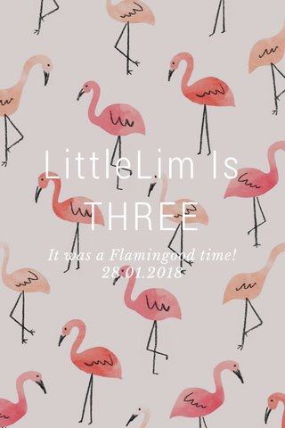 LittleLim Is THREE It was a Flamingood time! 28.01.2018