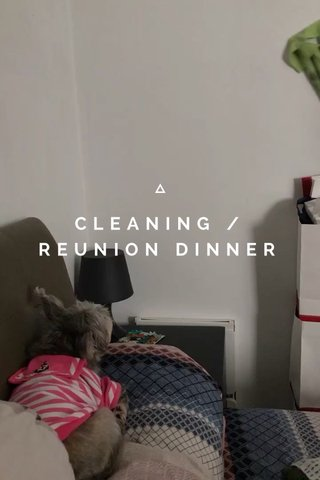 CLEANING /REUNION DINNER
