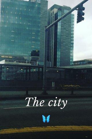 The city 🦋
