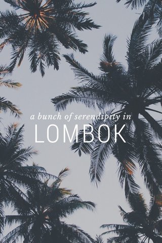 LOMBOK a bunch of serendipity in