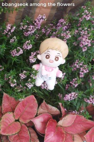 bbangseok among the flowers