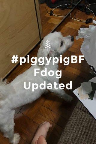 #piggypigBFFdog Updated