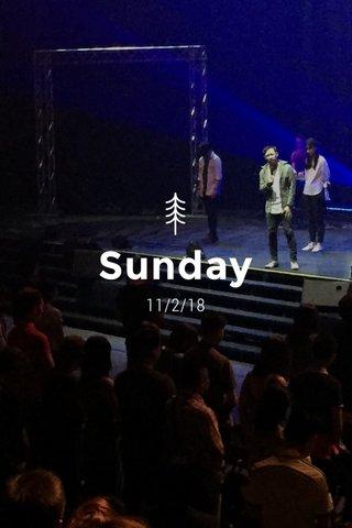 Sunday 11/2/18