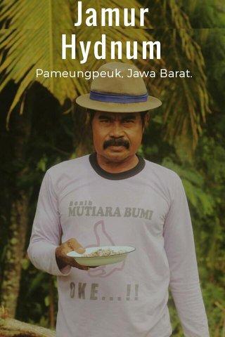 Jamur Hydnum Pameungpeuk, Jawa Barat.