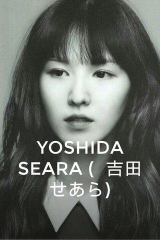 YOSHIDA SEARA ( 吉田 せあら)