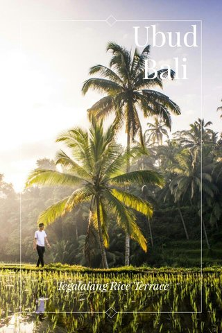 Ubud Bali Tegalalang Rice Terrace
