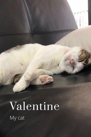 Valentine My cat