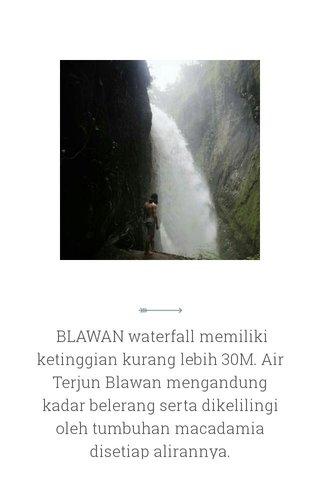 BLAWAN waterfall memiliki ketinggian kurang lebih 30M. Air Terjun Blawan mengandung kadar belerang serta dikelilingi oleh tumbuhan macadamia disetiap alirannya.