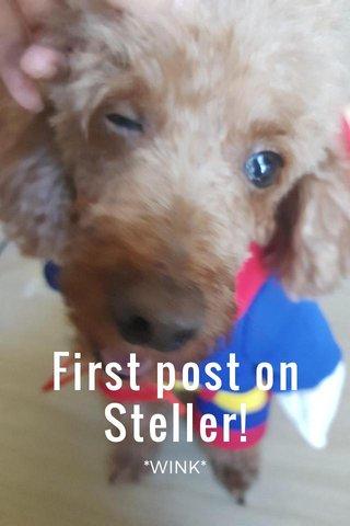 First post on Steller! *WINK*