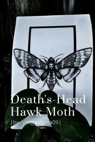 Death's-Head Hawk Moth |by : yhogautama09|