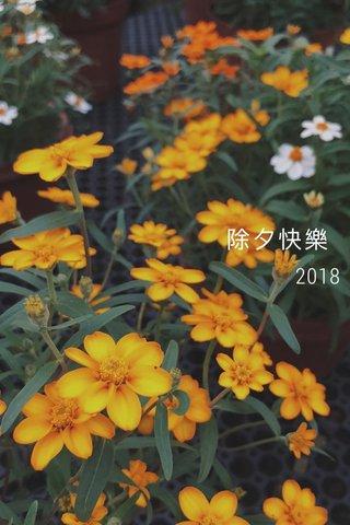 除夕快樂 2018