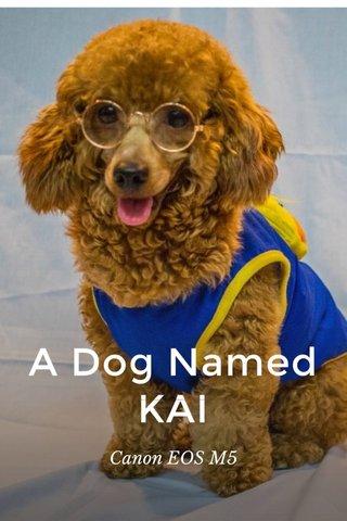 A Dog Named KAI Canon EOS M5