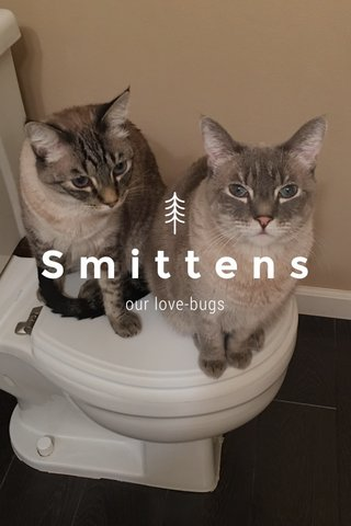 Smittens our love-bugs
