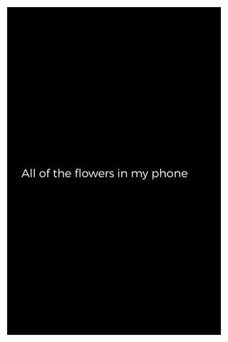 All of the flowers in my phone