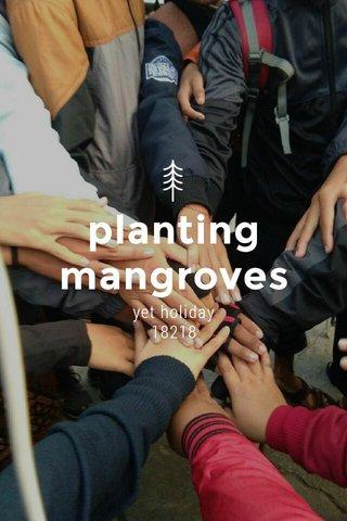planting mangroves yet holiday 18218