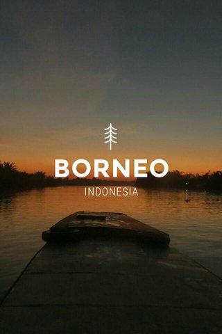 BORNEO INDONESIA